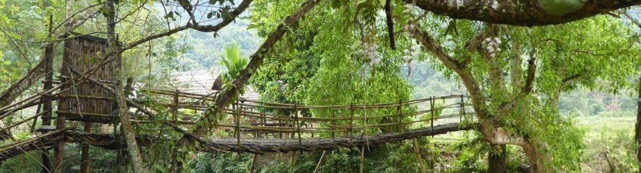 Pensieri in viaggio: LAOS – il nord selvaggio (PARTE 2)