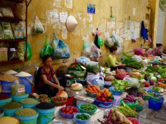 In Vietnam mangiano i cani? – Cose strane nel mondo