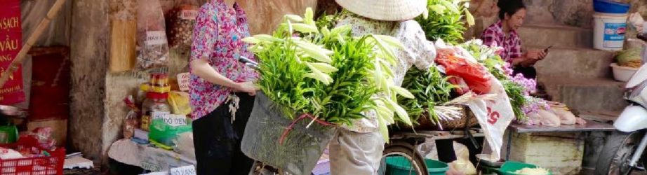 Prelevare in Vietnam: carte o contanti?
